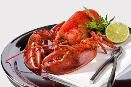fancy lobster food