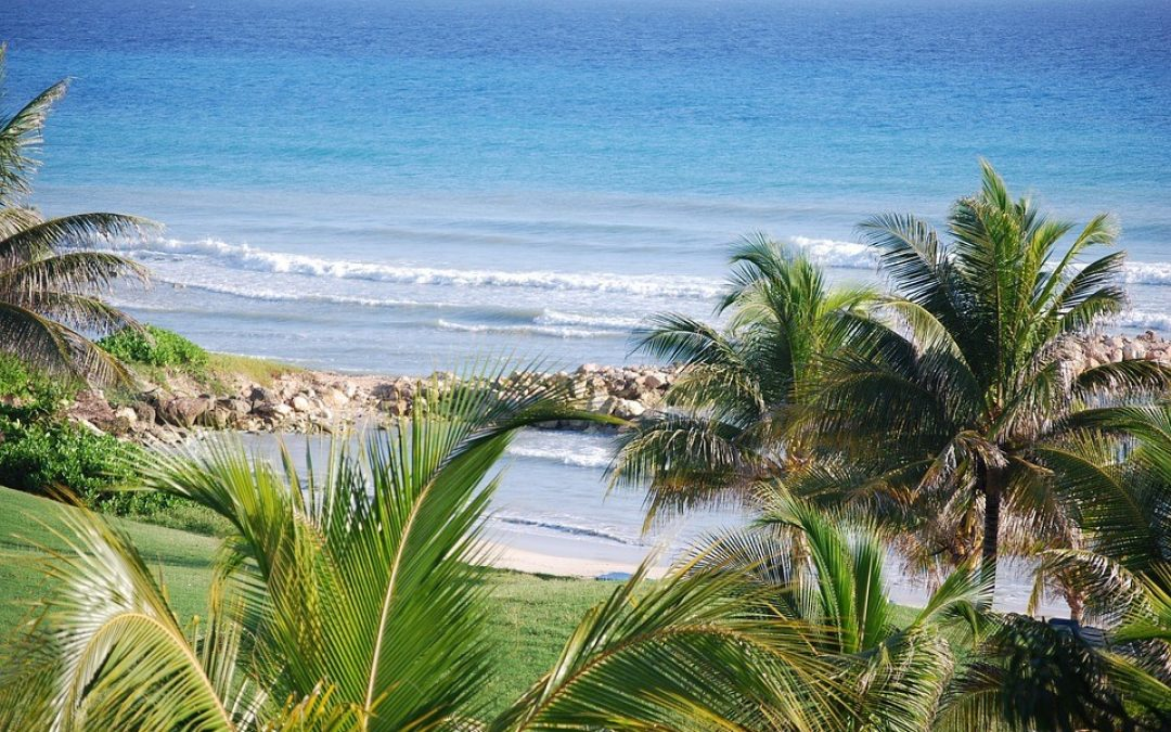 Visiting Jamaica – What You Need to Know