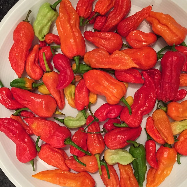 spicy food chili peppers