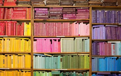 Find Hidden Gems in Independently Run Bookstores