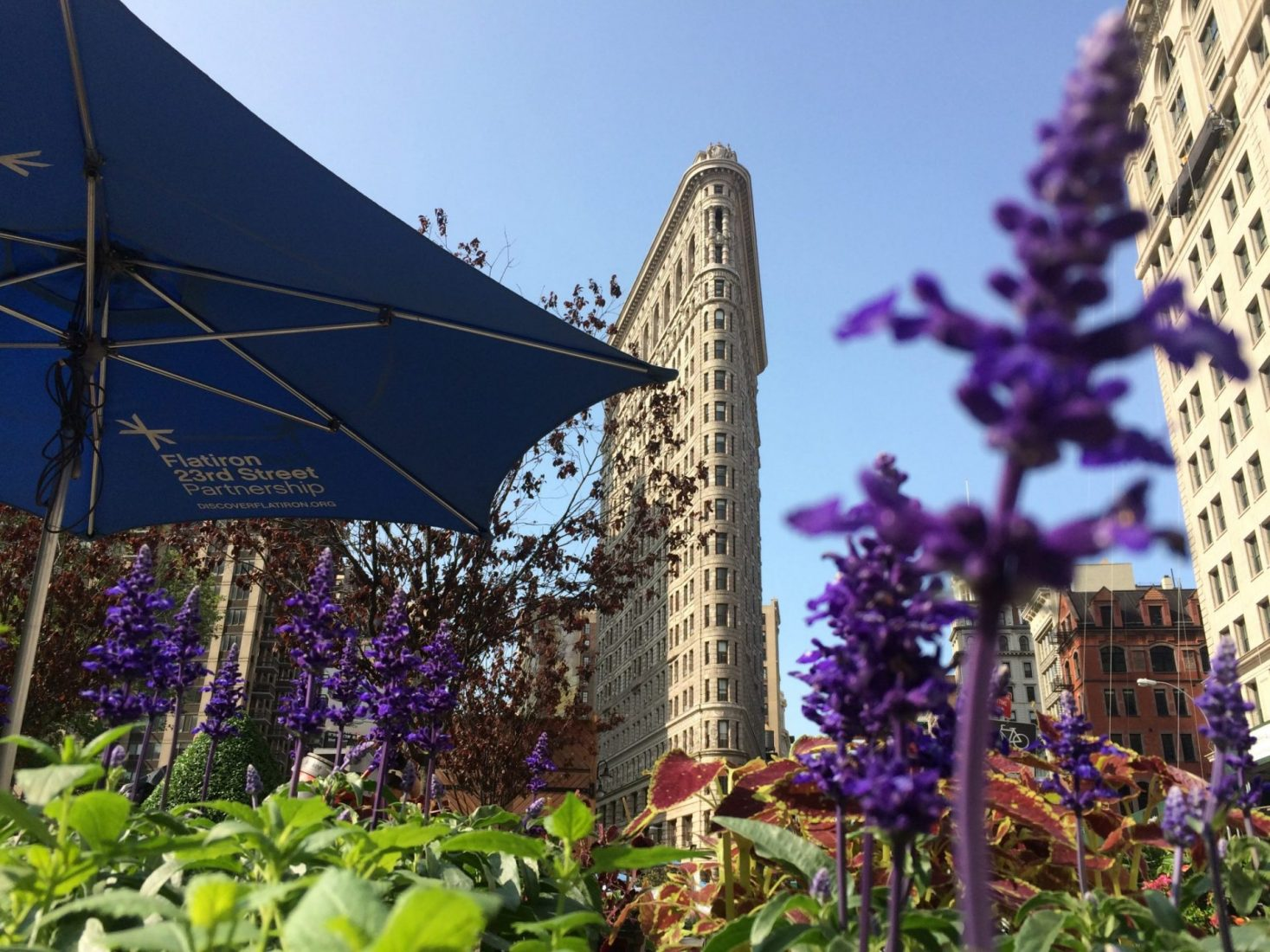 Flatiron Manhattan's Hospitality Hotspot